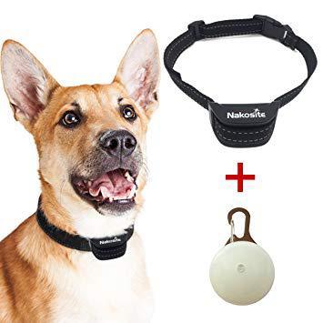 meilleur collier anti aboiement gros chien