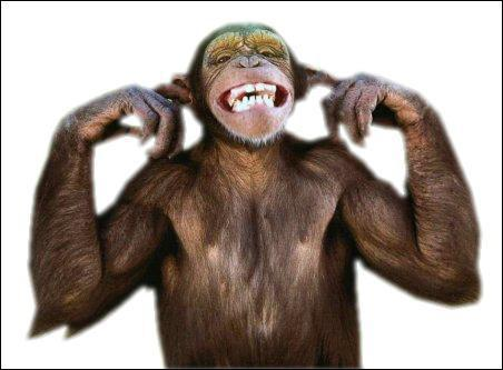 mono espagnol