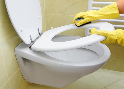 nettoyage de toilette