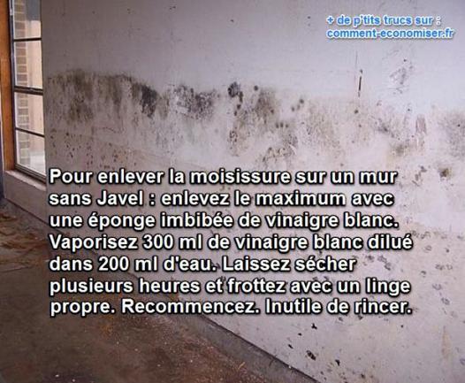nettoyer moisissure sur mur
