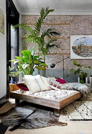 plante chambre feng shui