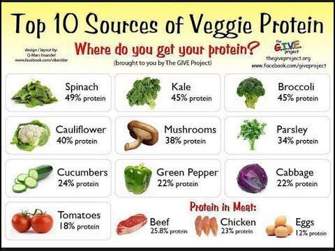 protéines végétale