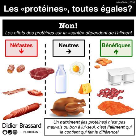 quels sont les protéines