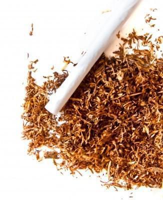 tabac à tuber