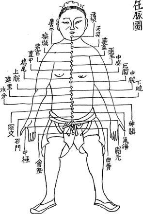 taoïsme et corps humain
