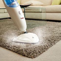 vapeur tapis